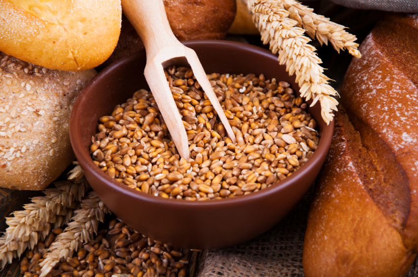 Wheat Germ Top Food For for Vitamin E