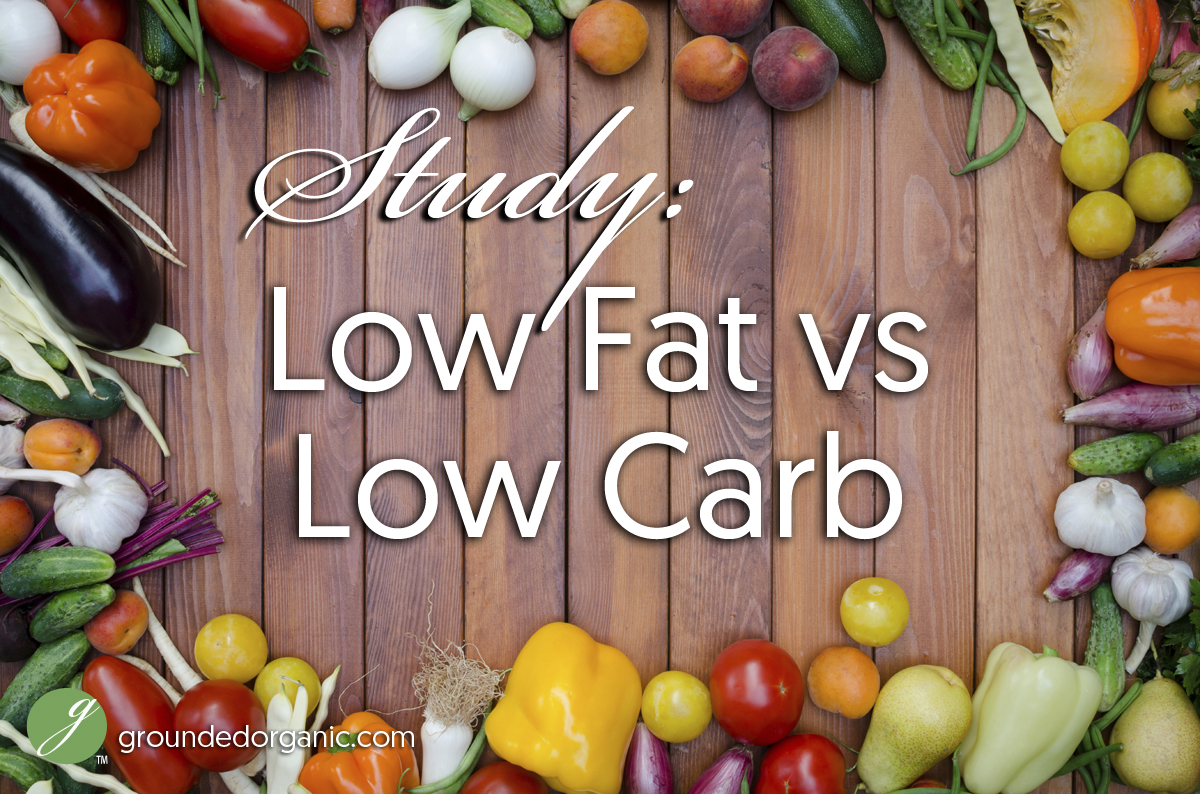 Low Fat vs Low Carb