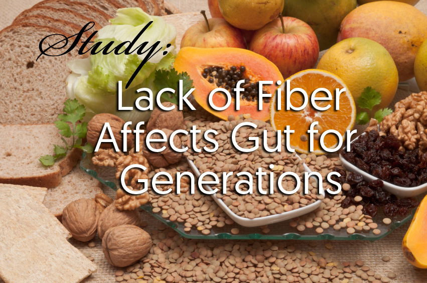 lack of fiber affects gut for generations