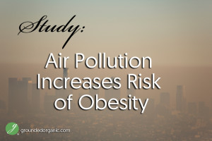 Study: Air Pollution Increases Risk of Obesity