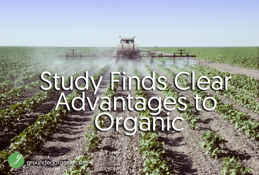 study finds clear advantages to organic