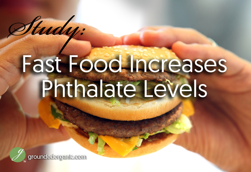 phthalates and fast food