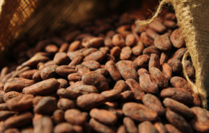 Study: Cocoa Compound May Support Heart Health